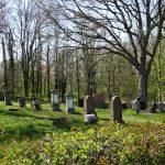 Judenfriedhof in Drove